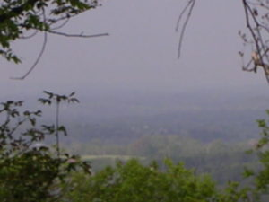 Hwy 231 view (14)