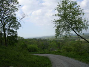 Hwy 231 view (15)