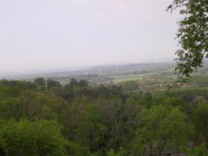 Hwy 231 view (16)