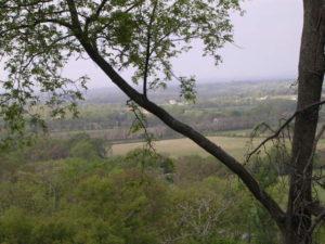 Hwy 231 view (35)