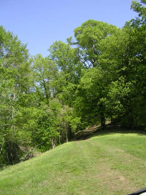 Sloan Branch (14)