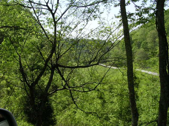 Sloan Branch (8)